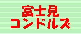 fujicon.jpg