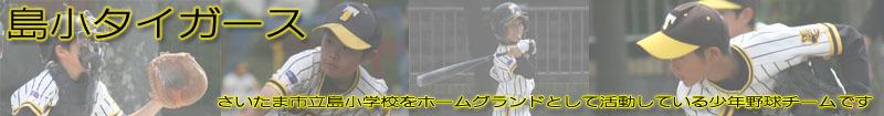 shimasho_T.jpg